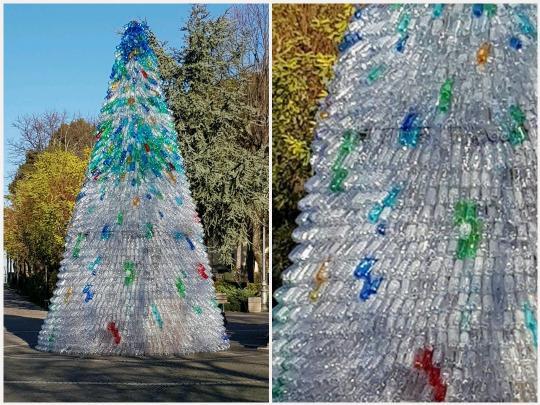 Albero Di Natale 8 Dicembre.L 8 Dicembre Verra Acceso L Albero Di Natale Realizzato Con 3 000